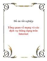 Tài liệu Đồ án tốt nghiệp Tổng quan về mạng và các dịch vụ thông dụng trên Internet doc