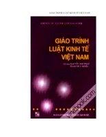 Tài liệu Giáo trình luật kinh tế Việt Nam docx