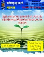 Slide ĐÁNH GIÁ HIỆU QUẢ KINH tế cây CAO SU TIỂU điền TRÊN địa bàn xã LINH hải, HUYỆN GIO LINH, TỈNH QUẢNG TRỊ