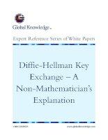 Tài liệu Diffie-Hellman Key Exchange – A Non-Mathematician's Explanation docx