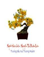 Bài giảng TLV: Đoạn văn trong bài miêu tả cây cối