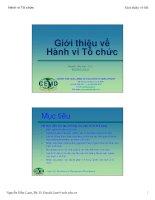 Tài liệu Giới thiệu về hành vi tổ chức docx