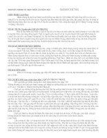 Gián án Thuyết Minh về món ăn dân tộc - Bánh Chưng