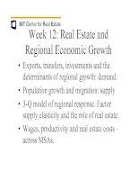 Tài liệu The Determinants of Metropolitan Growth pdf