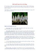 Tài liệu Bài thuốc hay từ củ cải trắng