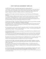 Tài liệu Hợp đồng liên doanh dự thầu bằng Tiếng Anh doc