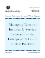 Tài liệu Managing Telecom Invoices & Service Contracts in the Enterprise:A Guide to Best Practices doc