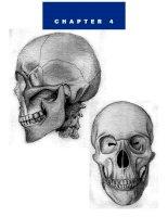 Tài liệu Figure Drawing - Hand - Feed - Head pptx