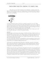 Tài liệu Tìm hiểu về Nhật Bản: Trò chơi truyền thống và thiếu nhi Nhật Bản pdf