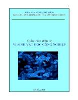 Tài liệu Giáo Trình vi sinh vật học công nghiệp pdf