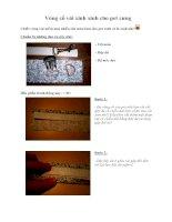 Tài liệu Vòng cổ vải xinh xinh cho pet cưng pptx