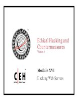 Ethical Hacking and Countermeasures v6 module 16 hacking webservers