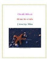 Tài liệu Chủ đề: Biển cả - Đề tài: Bé vẽ biển - Nhóm lớp: Mầm doc
