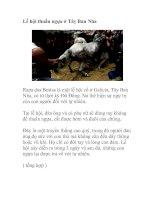 Tài liệu Lễ hội thuần ngựa ở Tây Ban Nha ppt
