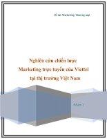 Nghiên cứu chiến lược marketing trực tuyến của viettel tại thị trường việt nam