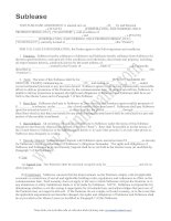 Tài liệu MẪU HỢP ĐỒNG CHO THUÊ LẠI pdf