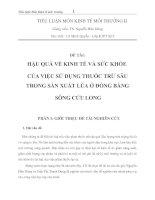 HẬU QUẢ về KINH tế và sức KHỎE của VIỆC sử DỤNG THUỐC TRỪ sâu TRONG sản XUẤT lúa ở ĐỒNG BẰNG SÔNG cửu LONG