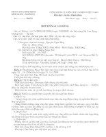 Tài liệu Hợp đồng làm việc lần đầu