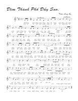Tài liệu Bài hát đêm thành phố đầy sao - Trần Long Ẩn (lời bài hát có nốt) pdf