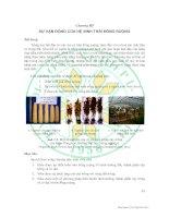 Tài liệu Giáo trình sinh thái học đồng ruộng - Chương 3 pdf