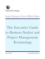 Tài liệu The Executive Guide to Business Analyst and Project Management Terminology pptx