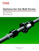 Tài liệu Options for the Ball Screw pptx