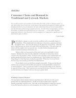 CHAPTER 8 Consumer Choice and Demand in Traditional and Network Markets