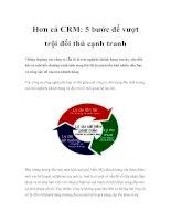 Tài liệu Hơn cả CRM: 5 bước để vượt trội đối thủ cạnh tranh pdf