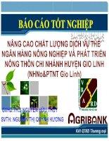 Slide nâng cao chất lượng dịch vụ thẻ của ngân hàng nông nghiệp & phát triển nông thôn việt nam chi nhánh huyện gio linh tỉnh quảng trị