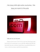 Tài liệu Xây dựng chiến dịch online marketing - Tận dụng sức mạnh từ Microsite doc