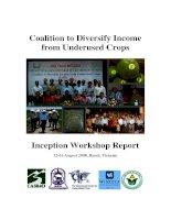 Tài liệu Inception Workshop Report pptx