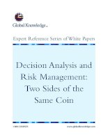 Tài liệu Decision Analysis and Risk Management: Two Sides of the Same Coin pdf