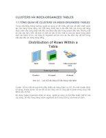 Tài liệu CLUSTERS VÀ INDEX-ORGANIZED TABLES pdf