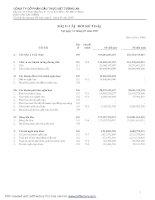 Tài liệu BẢNG CÂN ĐỐI KẾ TOÁN NĂM 2007 CỦA CÔNG TY CỔ PHẦN DÂÙ THỰC VẬT TƯỜNG AN pdf