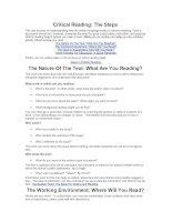Tài liệu Presentation cơ bản về ngữ pháp tiếng Anh: Critical Reading pptx