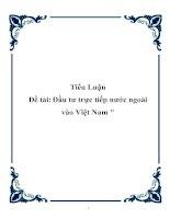 """Tài liệu Tiểu luận """"Đầu tư trực tiếp nước ngoài vào Việt Nam"""" ppt"""