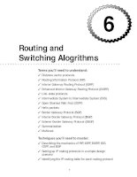 Tài liệu Routing and Switching Alogrithms pdf