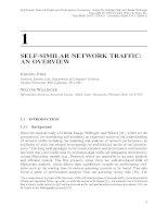 Tài liệu Mạng lưới giao thông và đánh giá hiệu suất P1 doc