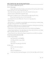 Tài liệu Hồ sơ thiết kế lắp đặt hệ thống VoIP Clarent (Phần IV.4) pdf