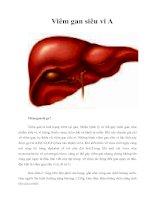 Tài liệu Viêm gan siêu vi A pdf
