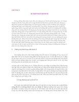 Tài liệu KINH TẾ QUỐC TẾ- CHƯƠNG 5: SỰ HỢP NHẤT KINH TẾ Trong những thảo luận truớc đây của chúng ta pptx