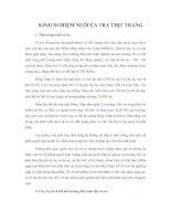 Tài liệu KINH NGHIỆM NUÔI CÁ TRA THỊT TRẮNG ppt