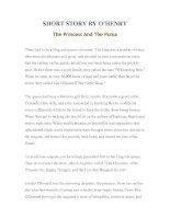 Tài liệu LUYỆN ĐỌC TIẾNG ANH QUA TÁC PHẨM VĂN HỌC-SHORT STORY BY O'HENRY- The Princess And The Puma docx