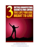 Tài liệu 3 Untold Manifesting Secrets For Living The Life You Are Meant To Live! ppt