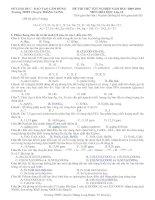 Bài soạn đề thi thử số 1