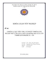 Chiến lược tiêu thụ và phát triển sản phẩm thức ăn gia cầm của công ty TNHH GUYOMARC'H VN