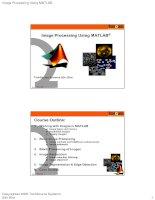 Tài liệu Image Processing Using MATLAB doc