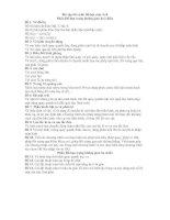 Tài liệu Bài tập lớn môn đồ hoạ máy tính ppt