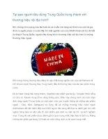 Tài liệu Tại sao người tiêu dùng Trung Quốc trung thành với thương hiệu nội địa pdf
