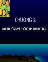 Tài liệu Bài giảng môn Marketing - chương 3 Môi trường và thông tin marketing docx